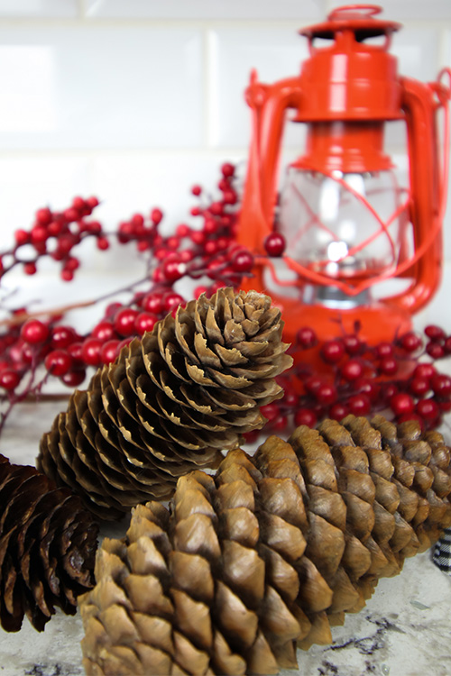DIY Christmas Basics - How to make Homemade Scented Pinecones.