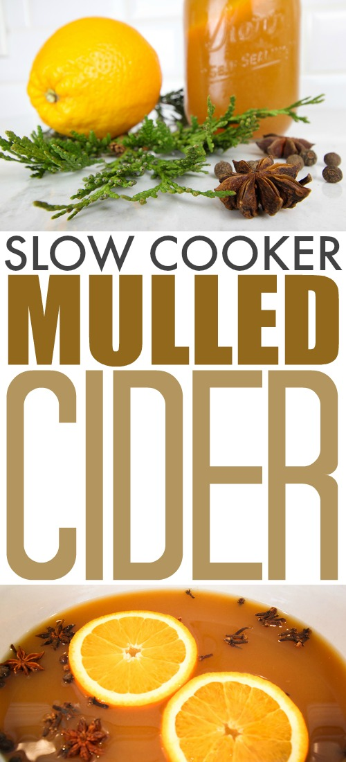 This festive slow cooker mulled cider will be a surefire hit for your next holiday get-together! It's also just about the easiest beverage you've ever made, thanks to your trusty Crock Pot!