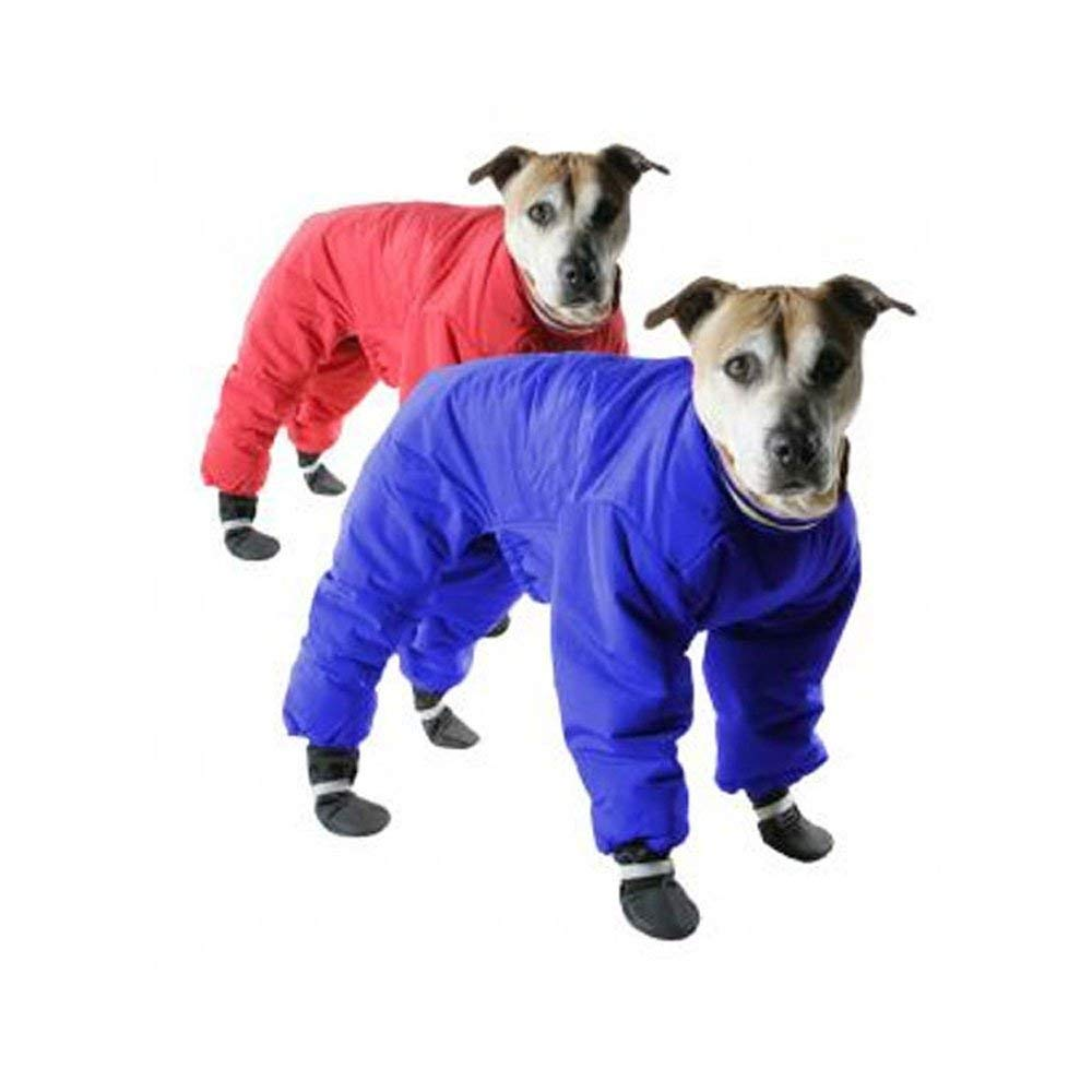 Winter Coats for Dogs: Doggy Snowsuit
