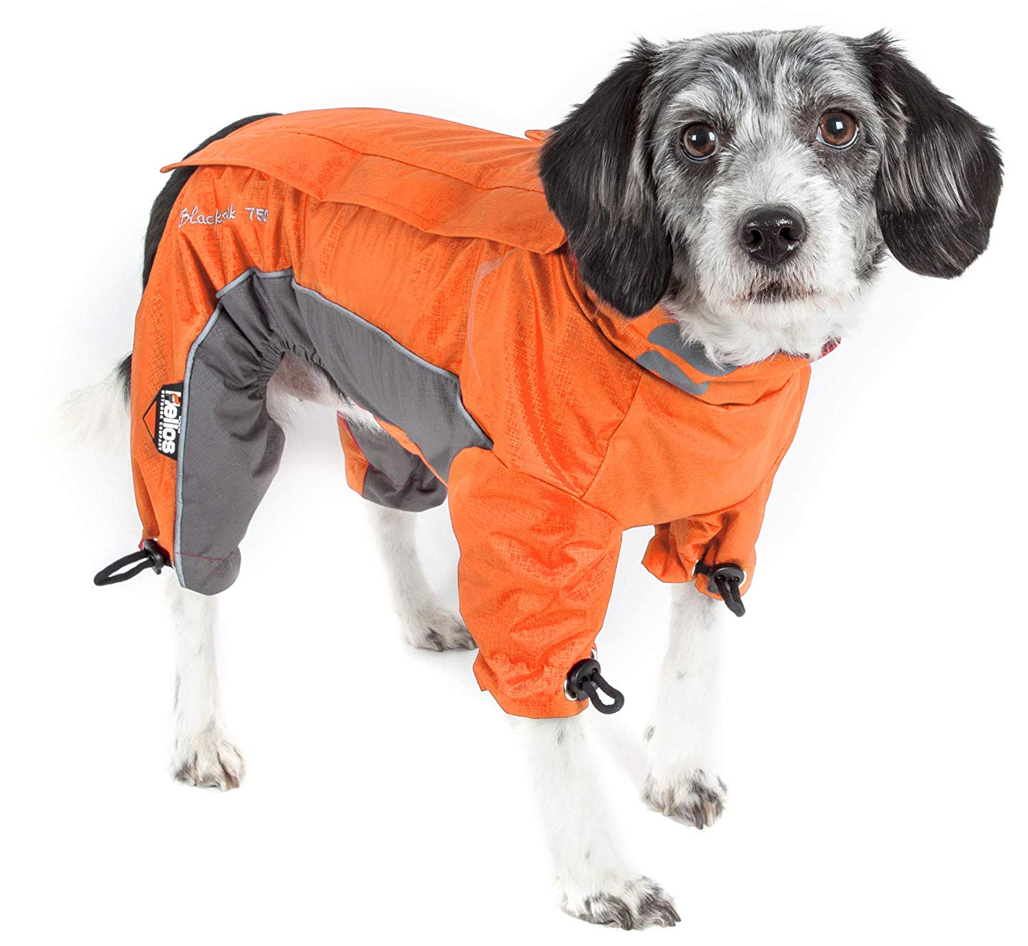 Winter Coats for Dogs: Dog Parka