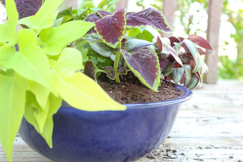 DIY Garden Planters #GardeningIdeas #DIYPlanters #ContainerGardens
