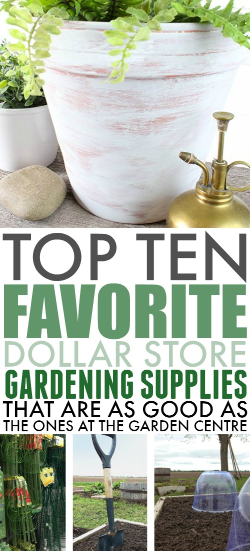 Instead of heading straight to the garden centre to stock up on what you need to grow your favourite flowers and veggies, check out these dollar store gardening supplies that are just as good as the more expensive ones!