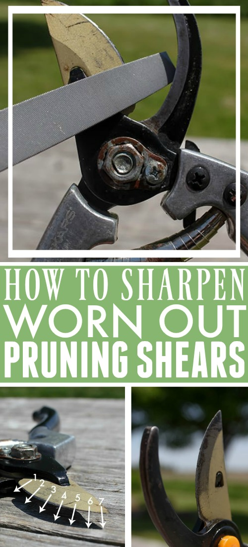If your pruning shears have gotten dull, or if you just want to keep them working as effectively as possible, follow these steps to learn how to sharpen pruning shears!