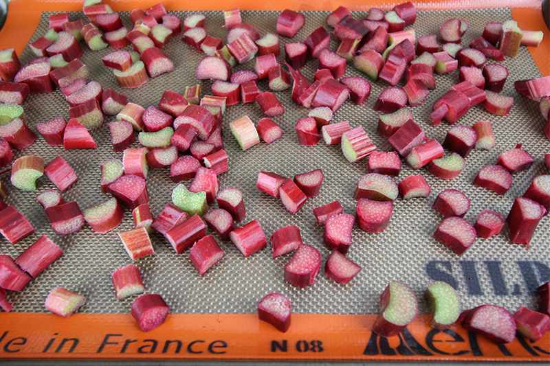 How To Freeze Rhubarb The Creek Line House