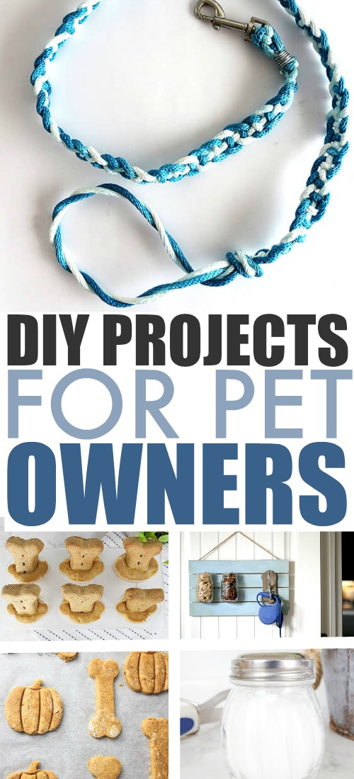 The next time you're feeling crafty, why not let your furry friends benefit from it too? Try these DIY projects for pet owners!