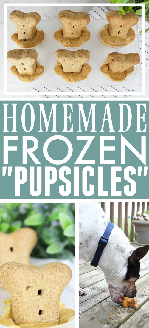"Try this recipe for homemade dog popsicles (AKA ""pupsicles"") the next time you want to give your dog something to help him cool down."