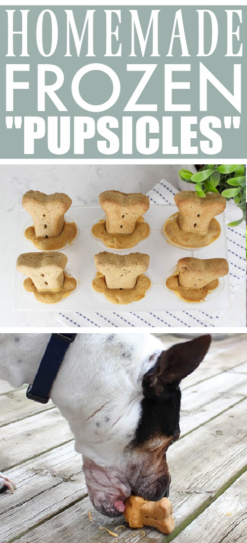 """Try this recipe for homemade dog popsicles (AKA """"pupsicles"""") the next time you want to give your dog something to help him cool down."""