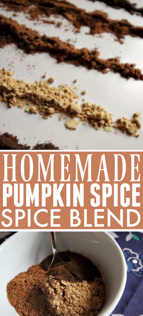 Pumpkin spice season has arrived!  Here is the absolute best way to make your own pumpkin spice blend using ingredients you probably have on hand already.