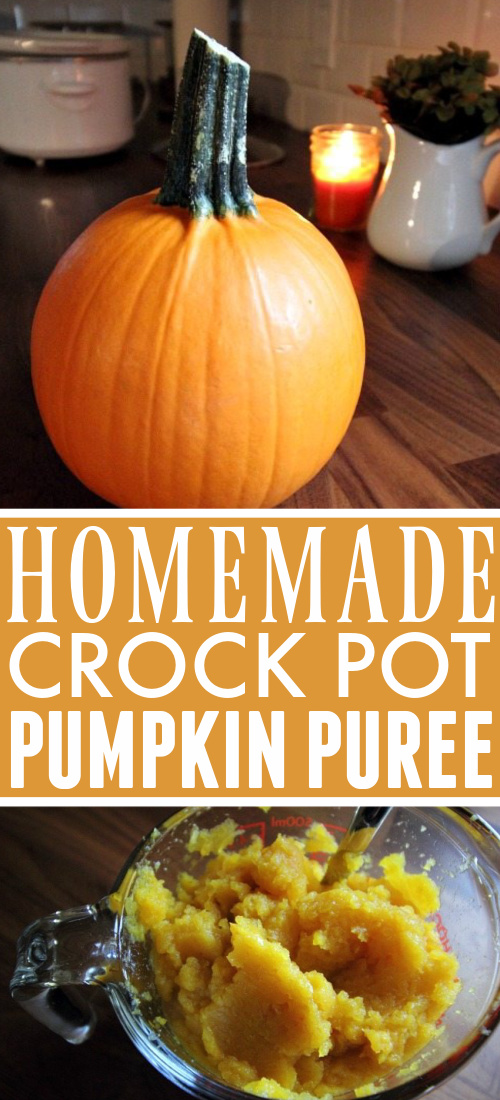 Make your own pumpkin puree in the Crock Pot! Follow this quick and simple recipe and enjoy fresher, better tasting pumpkin-y treats this fall.