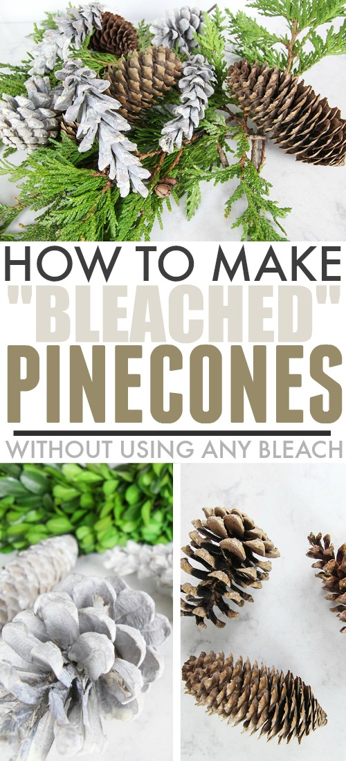 Do you love the modern farmhouse look of those pale pinecones we've all been seeing in Christmas decor lately? In today's post I'll show you how to create bleached pinecones with no bleach!