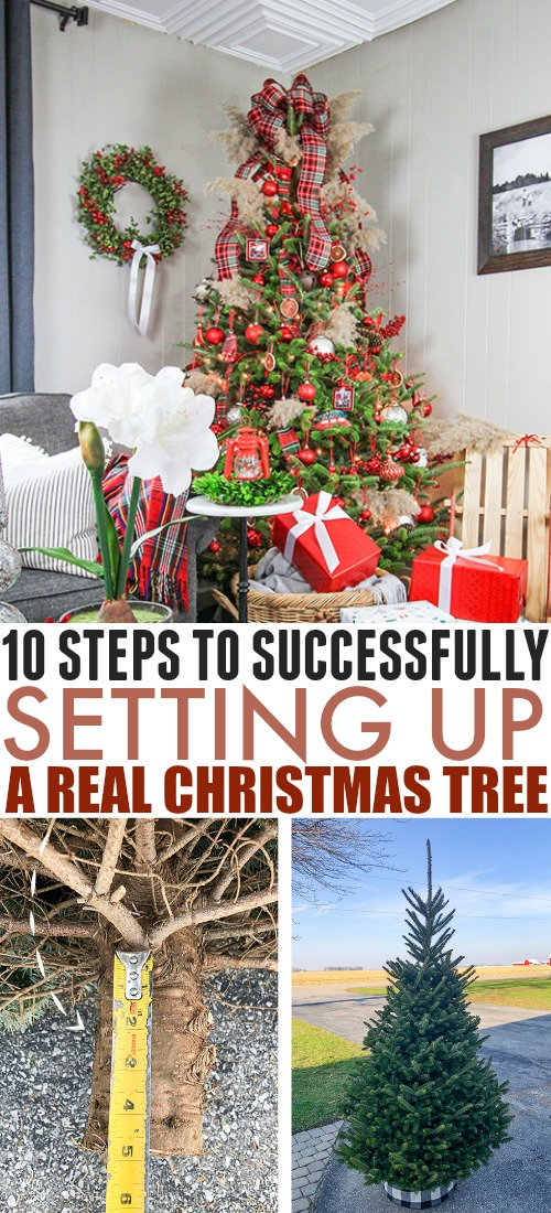 If you're considering your first real Christmas tree this year or you've had one for years, make the whole process easier with these 10 real Christmas tree tips.