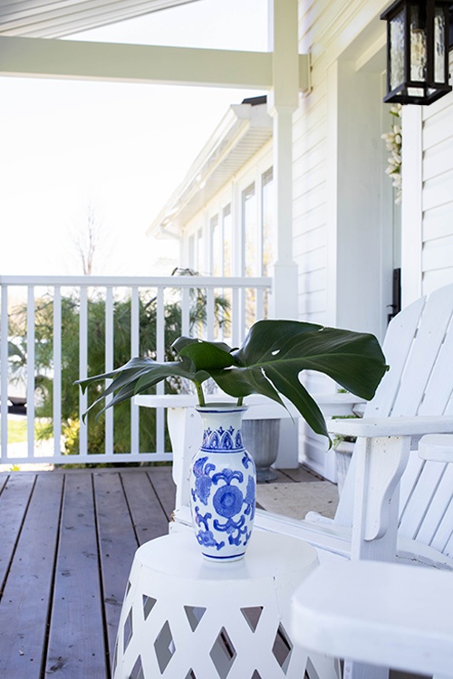 There aren't many things that I love more than heading outside to clip something interesting from our garden or property to use as home decor. Here are my top ten plants for home decor!