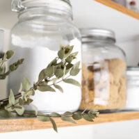 How to Keep Pests Out of the Pantry