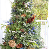 Blue and White Christmas Decor Plans