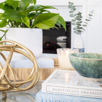 My Five Favorite Houseplants to Beat the Winter Blahs