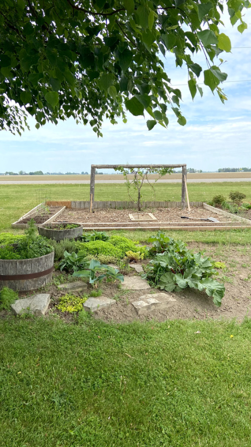 Five Things on a Friday - May Garden