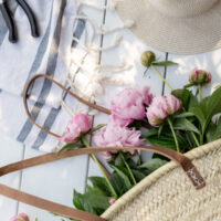 How to Divide Peonies