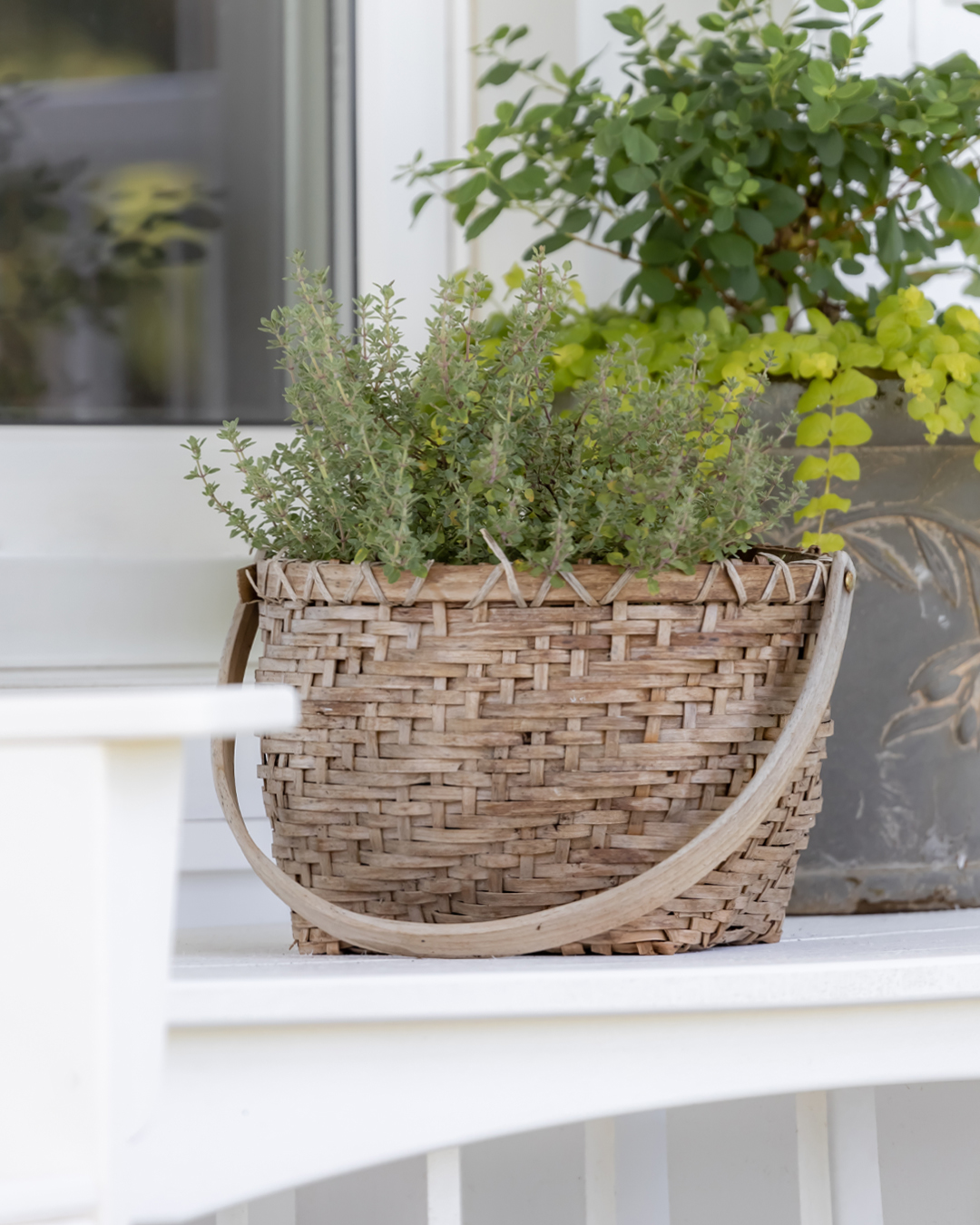 I love filling my planters every spring, but having to get rid of all those plants at the end of the season always makes me so sad. So here are some great perennial planters ideas that you can reuse year after year!
