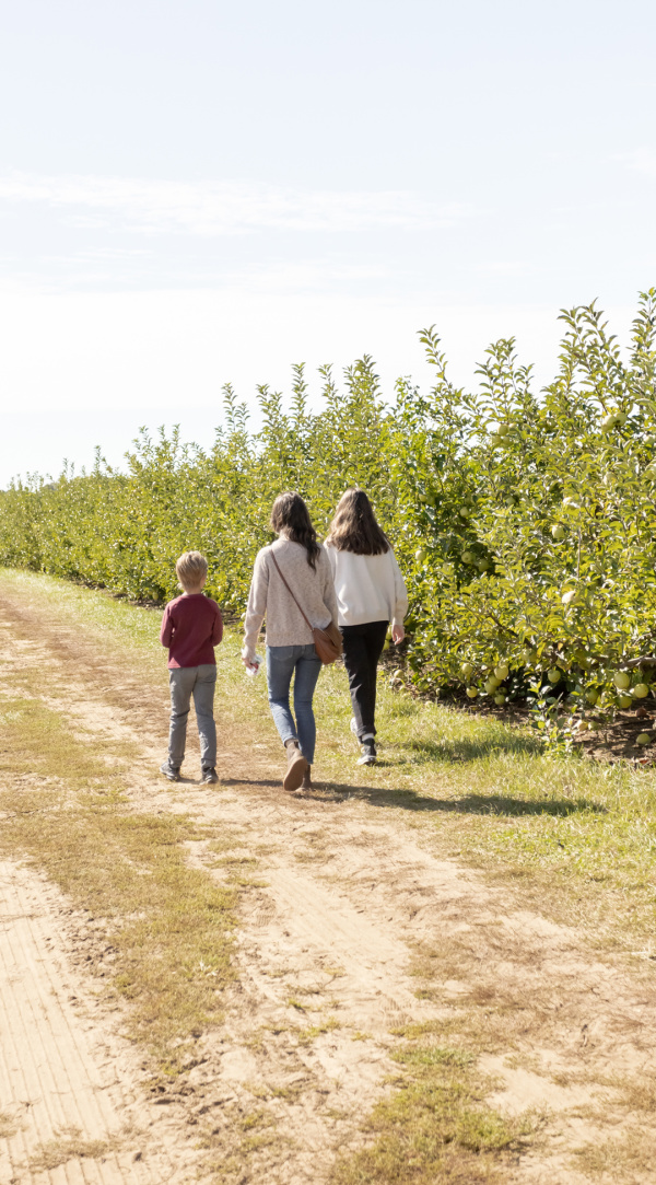 Five Thing on a Friday - At the Apple Orchard