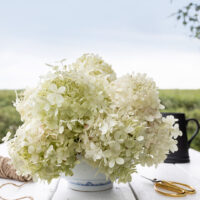 How to Make a Hydrangea Bowl Arrangement