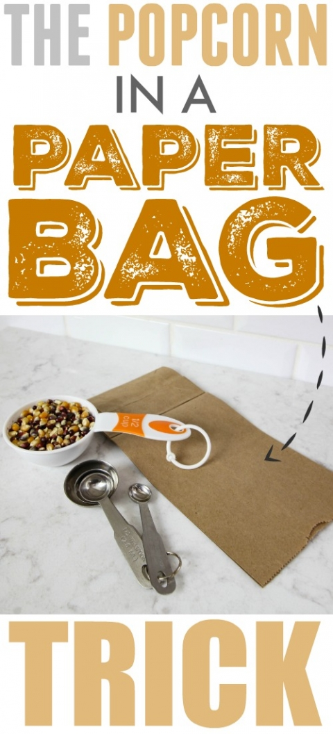 DIY Microwave Popcorn in a Brown Paper Bag – The Creek Line